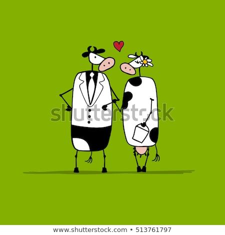 結婚 牛 牛 実例 カップル 動物 ストックフォト © adrenalina