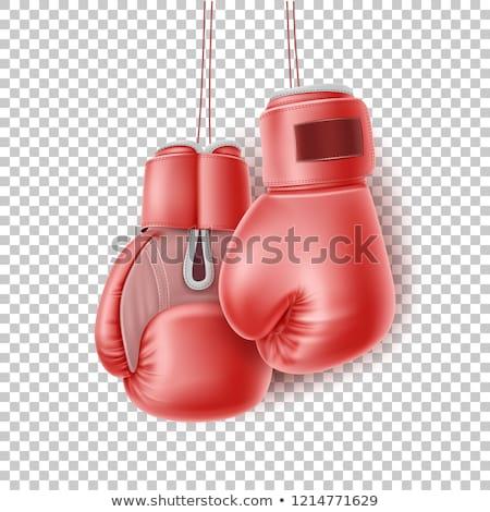 Boxer guanti asian guantoni da boxe giovani Foto d'archivio © RAStudio