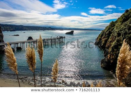 California · muelle · océano · blanco · negro · imagen · agua - foto stock © Backyard-Photography