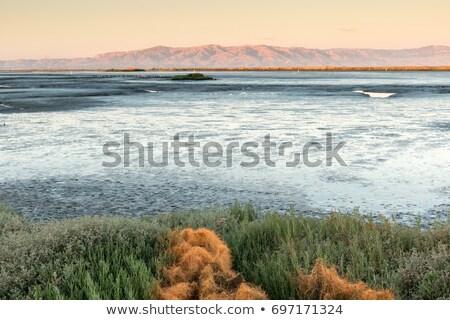 Gökyüzü doğa manzara yaz Stok fotoğraf © yhelfman