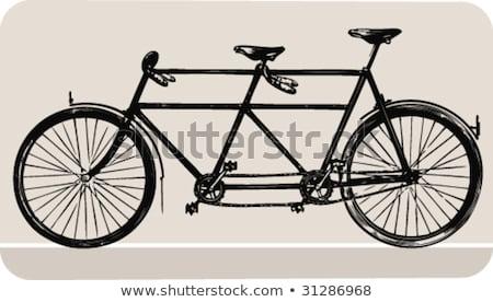 Retro silhouette tandem bicycle isolated on a white background.  Stock photo © NikoDzhi
