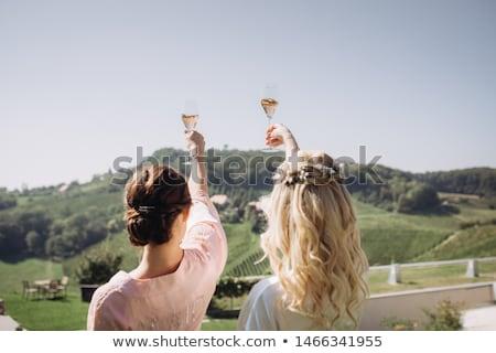 Gyönyörű esküvő pár iszik pezsgő piknik Stock fotó © tekso