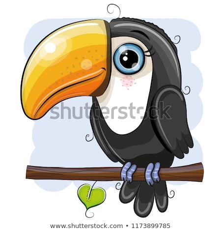 Vogel glückliches Gesicht Illustration glücklich Kunst funny Stock foto © bluering