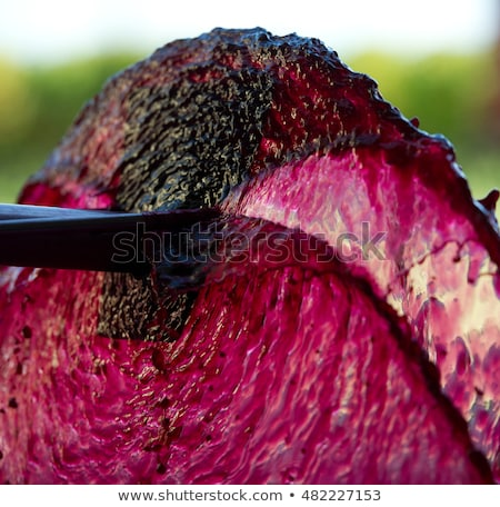 Aeration of the wine during the winemaking Stock photo © FreeProd