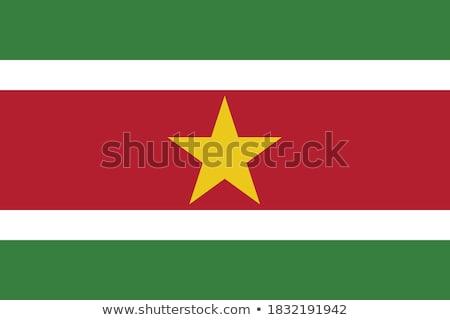 флаг · Суринам · карта · Мир · зеленый · Африка - Сток-фото © butenkow