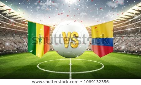 Football match Sénégal vs Colombie football Photo stock © Zerbor