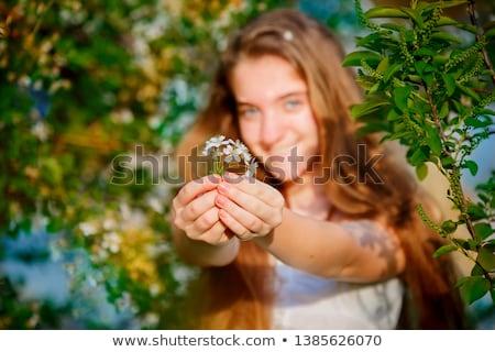 Sensualità fiore blu alto chiave bellezza Foto d'archivio © msdnv