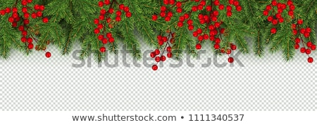 Xmas Garland Transparent Background Stock photo © barbaliss