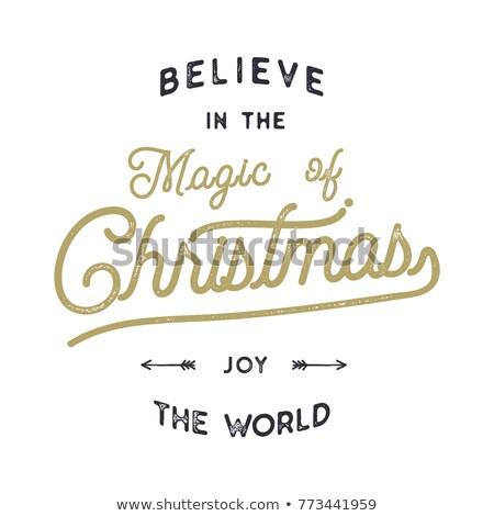 Weihnachten Typografie zitieren Design Magie Freude Stock foto © JeksonGraphics