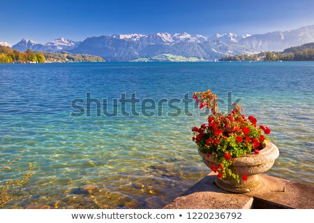 colorufil lake luzern and alps landscape view stock photo © xbrchx