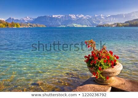 Colorufil Lake Luzern and Alps landscape view Stock photo © xbrchx