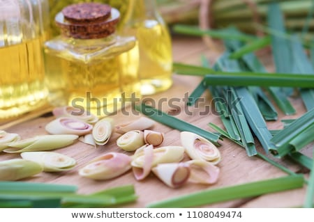 Fresh green lemon grass  Stock photo © szefei