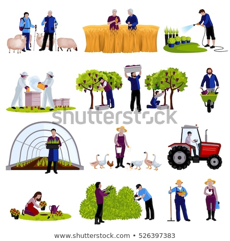 beekeeper and tractor on field vector illustration stock photo © robuart