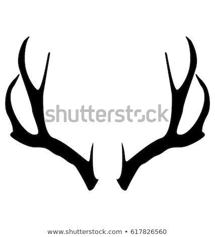 Background with deer antlers Stock photo © odina222