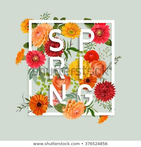 Belo flores da primavera projeto cópia espaço flores primavera Foto stock © dashapetrenko