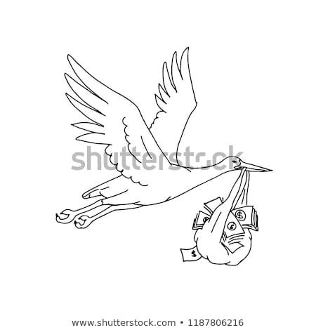 Stork Delivering Money Bag Drawing Stock photo © patrimonio