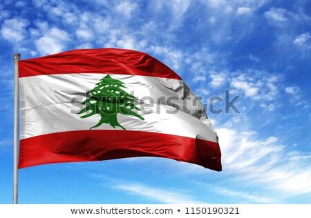 Ev bayrak Lübnan beyaz evler Stok fotoğraf © MikhailMishchenko