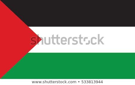palestine flag vector illustration stock photo © butenkow