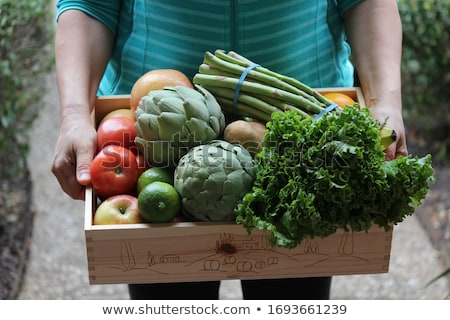 Woman carrying basket with healthy and locally produced vegetables Stock photo © Kzenon