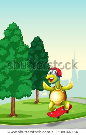 Teknős játszik gördeszka park illusztráció mosoly Stock fotó © colematt