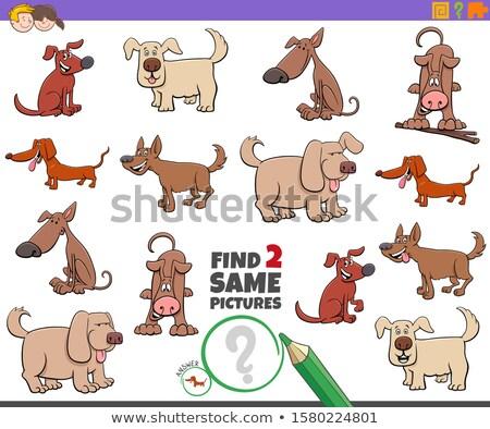 Encontrar dois cães jogo crianças Foto stock © izakowski