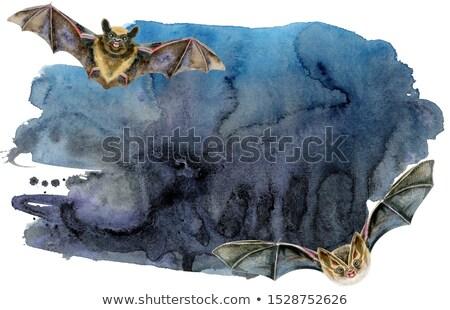 Zwarte aquarel bat vlucht decoratie spatten Stockfoto © Natalia_1947