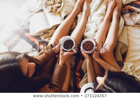 Enjoying in tea time at home Stock photo © zurijeta