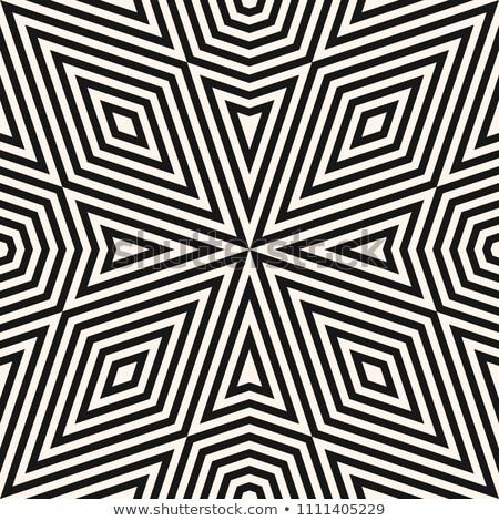 Wektora bezszwowy dekoracyjny wzór pasiasty czarno białe Zdjęcia stock © ExpressVectors