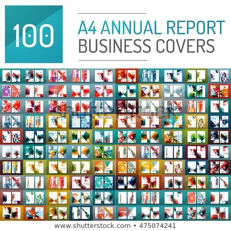 Modern kék üzlet éves jelentés brosúra Stock fotó © SArts