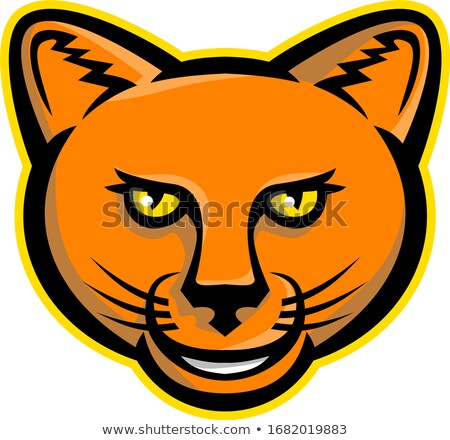 smiling cartoon cougar mountain lion mascot vector graphic stock photo © chromaco