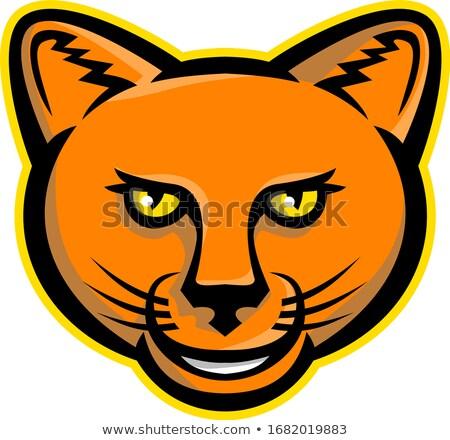 smiling cartoon cougar mountain lion mascot vector graphic stock photo © chromaco