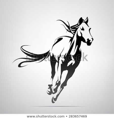 Head of a wild horse in the wilderness Stock photo © 3523studio