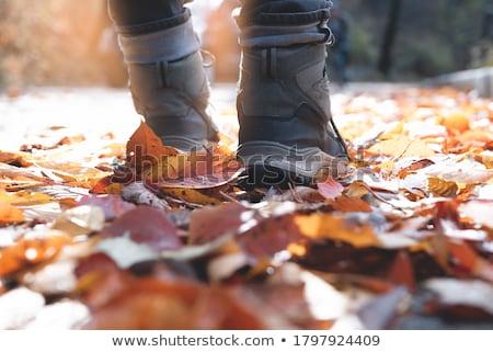 paire · vieux · sale · trekking · bottes · isolé - photo stock © taviphoto