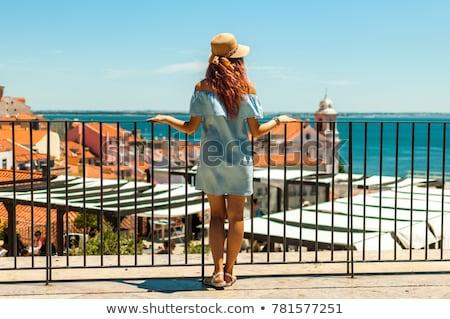lisbon panorama portugal stock photo © tannjuska