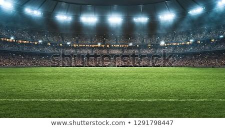 Campo di calcio palla erba calcio panorama calcio Foto d'archivio © almir1968