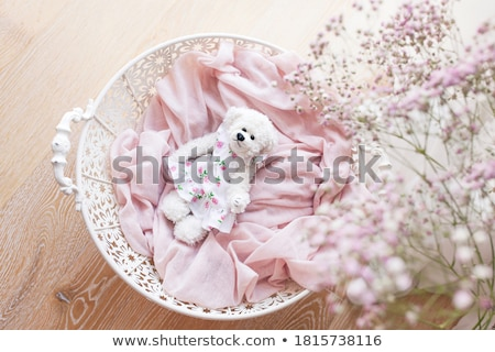 cute little baby infant in basket with teddy  stock photo © juniart