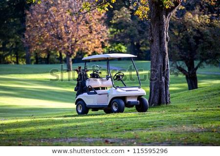 Golf kulüp ev araba ağaç bahar Stok fotoğraf © grivet