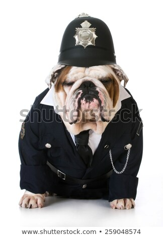 English policeman costume Stock photo © photography33