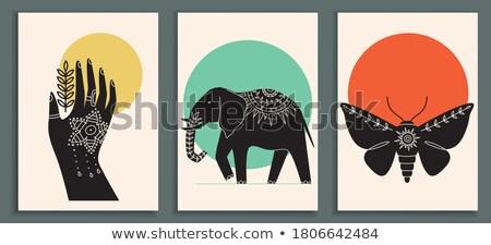 olifant · ontwerp · communie · collectie · henna · stijl - stockfoto © hpkalyani