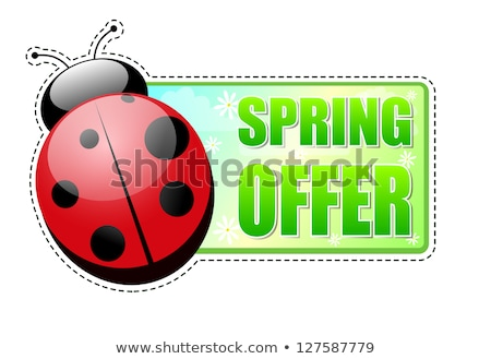 spring offer green label with ladybird Stock photo © marinini