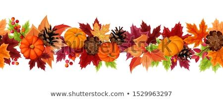 Sonbahar çerçeve akçaağaç yaprakları renkler Stok fotoğraf © rogerashford