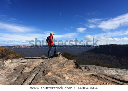 View from Flat Rock Kings Tableland Wentworth Falls Blue Mountai Stock photo © lovleah