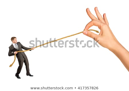 business woman against businessman pulling rope isolated Stock photo © juniart