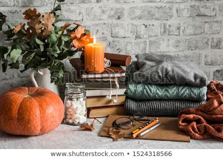 Hálaadás csendélet nyitva Biblia gyertya ősz Stock fotó © MKucova