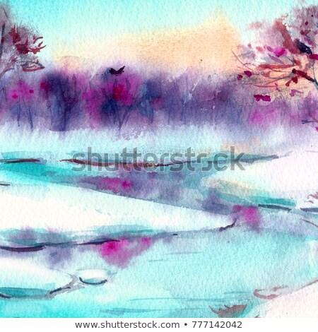 Serçe şube küçük kapalı kar orman Stok fotoğraf © hitdelight