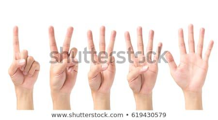Nő kezek izolált fehér üzlet iskola Stock fotó © oly5