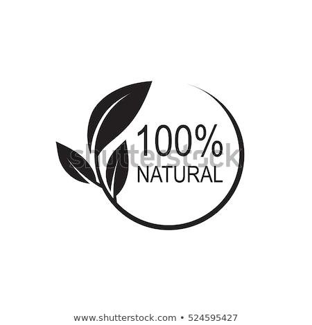 vektor · természetes · bélyeg · zöld · étel · egészség - stock fotó © burakowski
