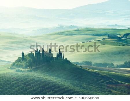 Toszkána · hajnal · Olaszország · ház · épület · tájkép - stock fotó © fisfra