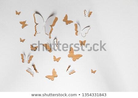 paper origami butterfly stock photo © elmiko
