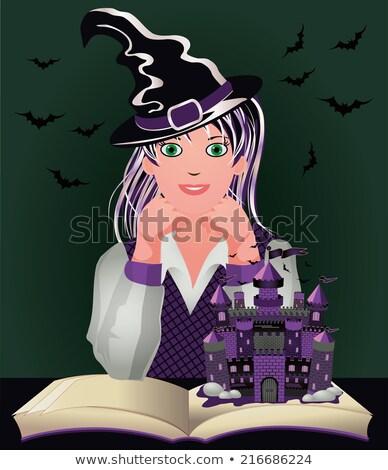 pequeno · bonitinho · fadas · castelo · violeta · conto · de · fadas - foto stock © carodi